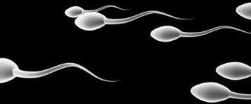 Esperma grosso ou viscoso — O que pode ser? Característica afeta as chances de engravidar?
