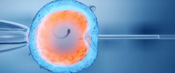 O que é ICSI? Quais as chances de engravidar?