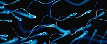 O que é oligospermia? Pode engravidar?