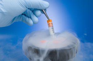 Congelamento de óvulos: Preço, Como Funciona?