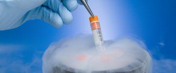 Congelamento de óvulos